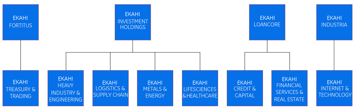 Our structure diagram